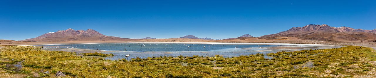 Panoramic view of Cañapa Lake, an endorheic salt lake in the Potosí Department of southwestern Bolivia.