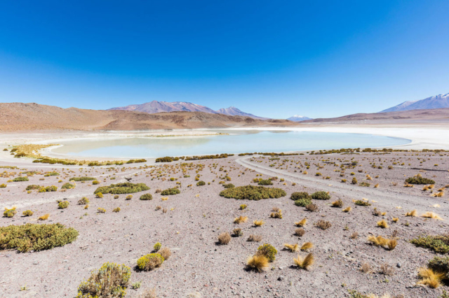 "Laguna Honda (in English ""Deep Lagoon""), a salt lake located at 4,114 m (13,497 ft) over the sea level, Bolivia."