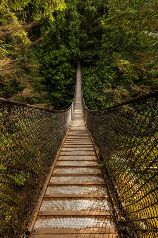 Lynn Canyon Suspension Bridge, Lynn Canyon Park, Vancouver, Canada.